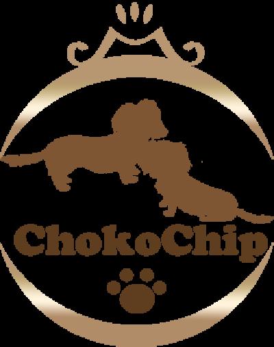 株式会社ChokoChip